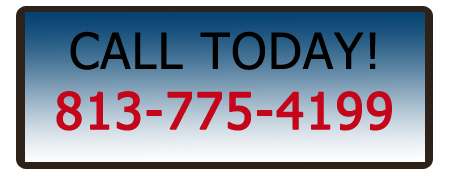 tampa pest control services